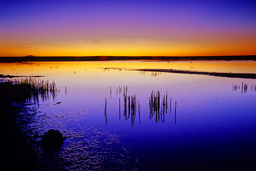 Abstract sunset lake marsh near Roswell New Mexico USA North America